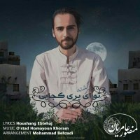 Mansour Amerian - 'To Ey Pari Kojayi'