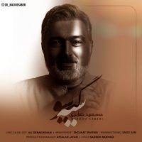 Masoud Saberi - 'Siyah Gisoo'