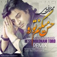 Mehdi Yaghmaei - 'Hess Mikonam Toro (Saeed Urwis Remix)'
