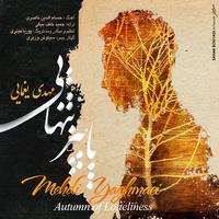 Mehdi Yaghmaei - 'Paeeze Tanhaei'
