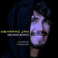 Mehraad Jam - 'Delamo Bordi'