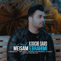 Meysam Ebrahimi - 'Kooche Sard'