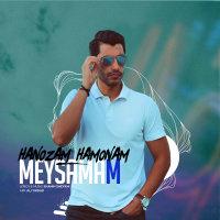 Meysam Rajabpour - 'Hanozam Hamonam'