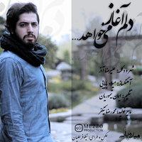 Milad Babaei - 'Delam Aghaz Mikhahad'