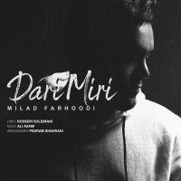 Milad Farhoodi - 'Dari Miri'