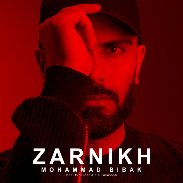 Mohammad Bibak - 'Zarnikh'