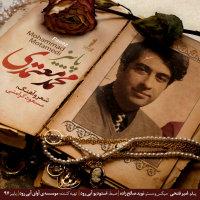 Mohammad Motamedi - 'Paeez'