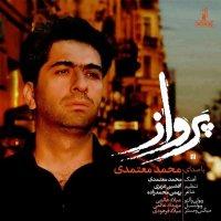 Mohammad Motamedi - 'Parvaz'