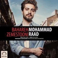 Mohammad Raad - 'Bahareh Zemestooni'