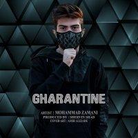 Mohammad Zamani - 'Gharantine'