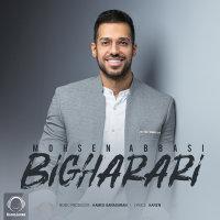 Mohsen Abbasi - 'Bigharari'