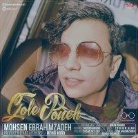 Mohsen Ebrahimzadeh - 'Gole Poneh'