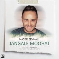 Naser Zeynali - 'Jangale Moohat'