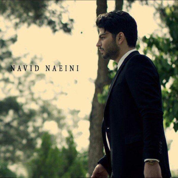 Navid Naeini - Baba Song