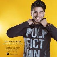 Navid Naeini - 'Mehraboontar Bash'