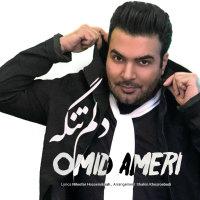 Omid Ameri - 'Delam Tangeh'