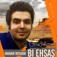 Omid Ameri - 'Bi Ehsas'