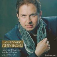 Omid Hasani - 'Del Sepordan'