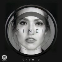 Orchid - 'Kineh'