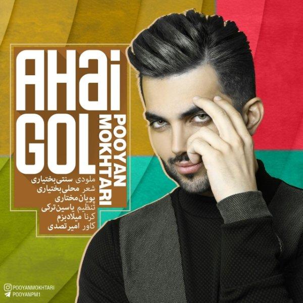 Pooyan Mokhtari - Ahai Gol Song