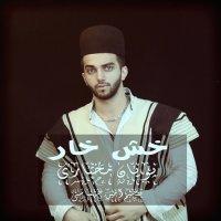 Pooyan Mokhtari - 'Khash Khar'
