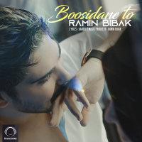 Ramin Bibak - 'Boosidane To'