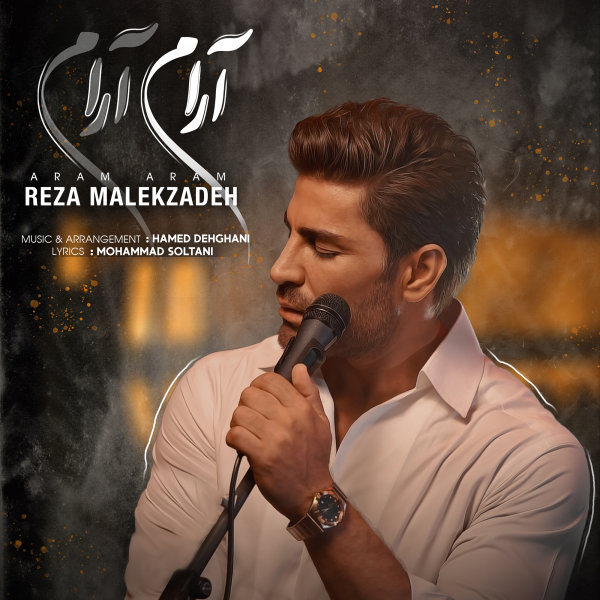 Reza Malekzadeh - Aram Aram Song | رضا ملک زاده آرام آرام'