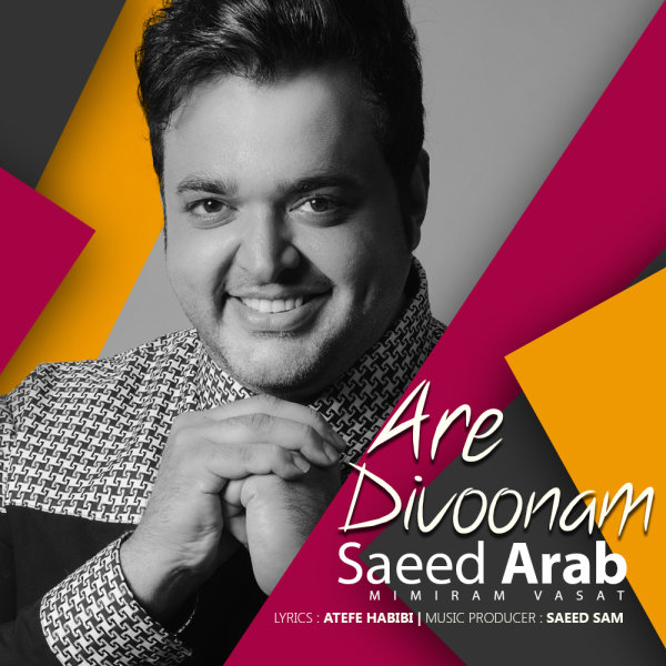 Saeed Arab - 'Are Divoonam'