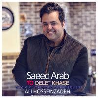 Saeed Arab - 'To Delet Khase'