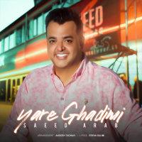 Saeed Arab - 'Yare Ghadimi'
