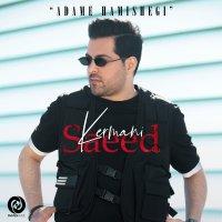 Saeed Kermani - 'Adame Hamishegi'