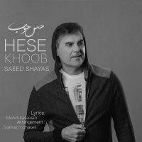 Saeed Shayas - 'Hese Khoob'