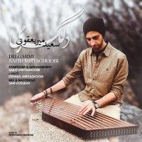 Saeid Miryaghoobi - 'Delgarmi'