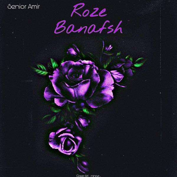 Senior Amir - Roze Banafsh