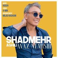 Shadmehr Aghili - 'Avaz Nemishi'