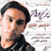 Shadmehr Aghili - 'Pare Parvaz (Instrumental)'