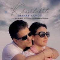 Shahab Kamoei - 'Khoshbakhti'