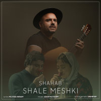 Shahab Projects - 'Shale Meshki'
