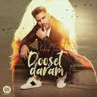Shahab Tiam - 'Dooset Daram'