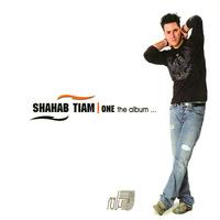 Shahab Tiam - 'Sad Dafeh Goftam (Instrumental)'