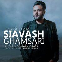 Siavash Ghamsari  - 'Havaeitam'