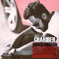 Siavash Ghamsari - 'Gharibe'