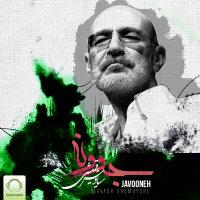 Siavash Ghomayshi - 'Javooneh'