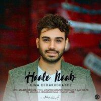 Sina Derakhshande - 'Hale Naab'