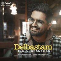 Sina Shabankhani - 'Del Bastam'