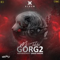 Sohrab MJ - 'Gorg 2 (Ft Amir Tataloo)'