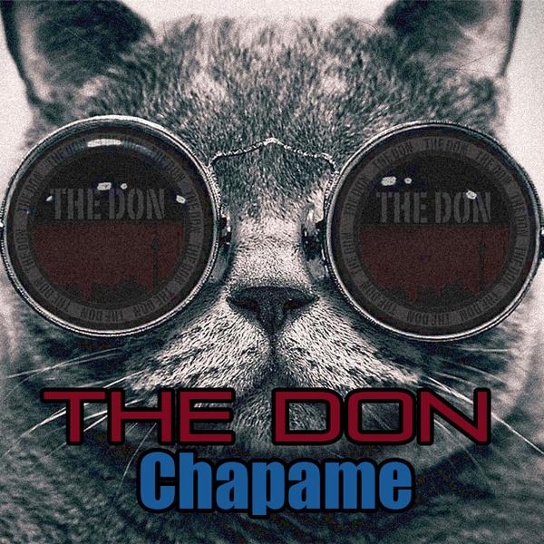 The Don - Chapame Song | دن چپمه'