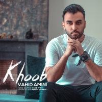 Vahid Amini - 'Khoob'