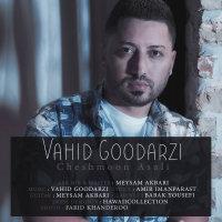Vahid Goodarzi - 'Cheshmoon Asali'