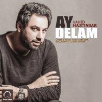 Vahid Hajitabar - 'Ay Delam'